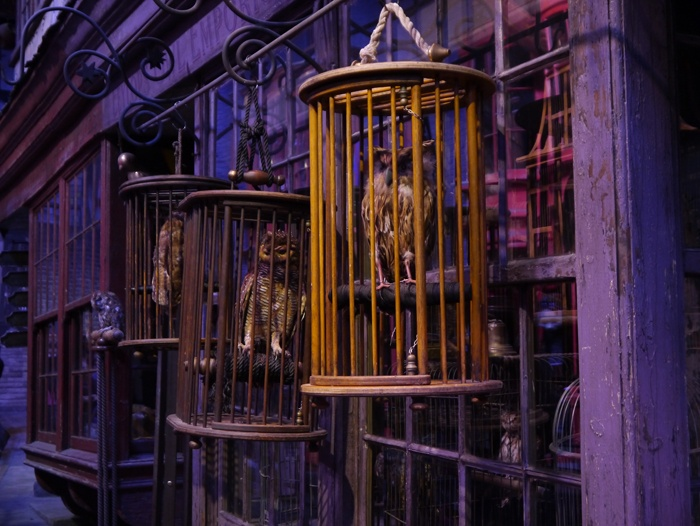 Studios_Harry-Potter_P1030940