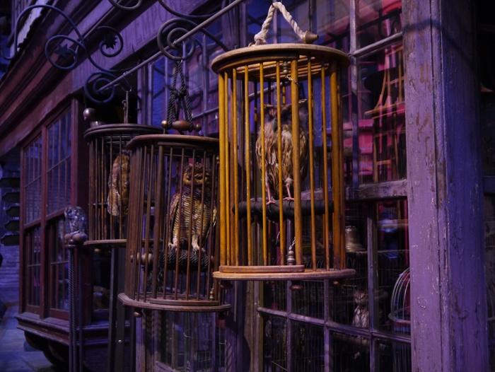 Studios_Harry-Potter_P1030940